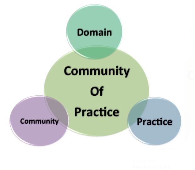 Growing Communities of Practice in Family Nursing and Family Focused Health Care